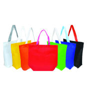 Canvas Bag/Jute Bag/Non Woven Bag