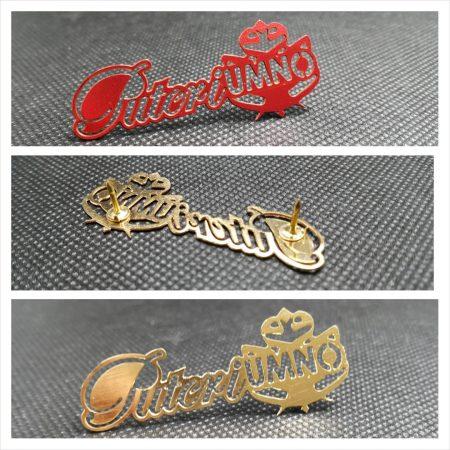 Badges and Collar Pin